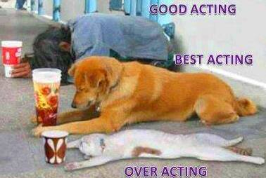 funny_types_of_acting-other